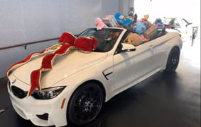 Baron BMW/MINI Toys for Tots 2017