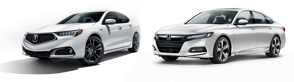 acura tlx vs honda accord 2019 comparison